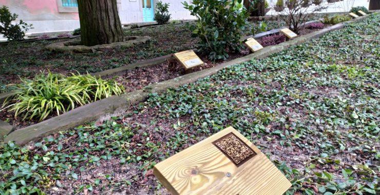 El Ayuntamiento del Real Sitio de San Ildefonso prepara varias rutas para promocionar su patrimonio vegetal